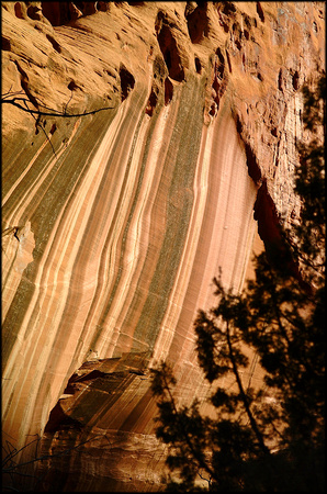 bt.gold.canyon-wall.2002.kinney